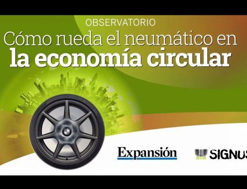 En Europa, la principal solución para los neumáticos usados son las fábricas de cemento