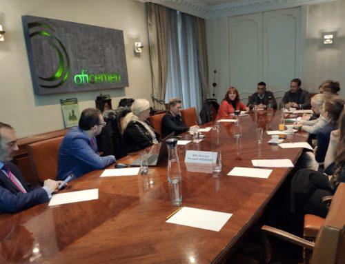 Una delegación de parlamentarias danesas visita F.CEMA para conocer su modelo de trabajo